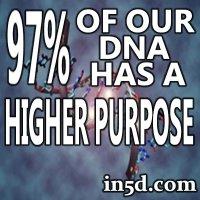 97-DNA