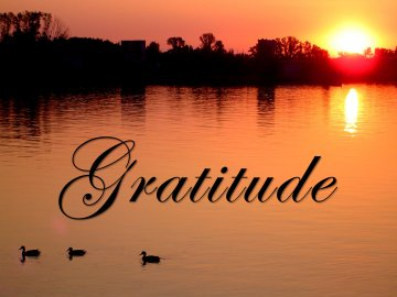 Inelia Benz – How Gratitude Transforms Us Gratitude