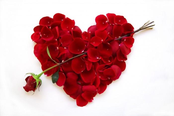 Srce srcu - Page 3 Heart-flowers