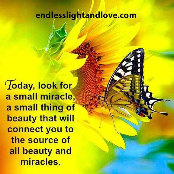 look for a small miracle