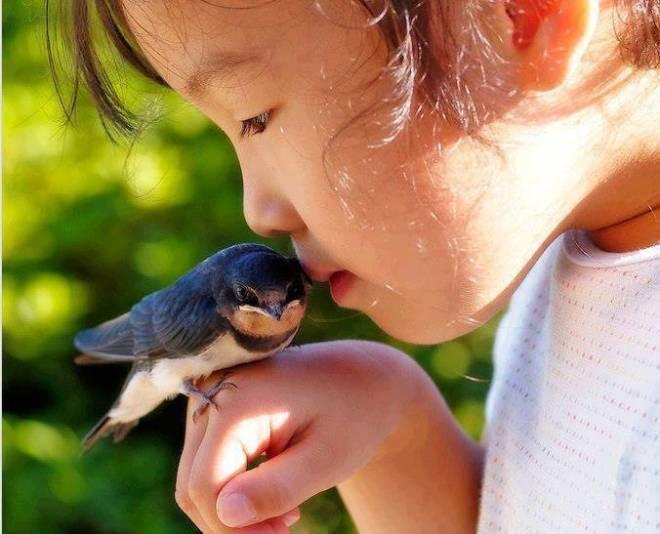 girl-with-bird
