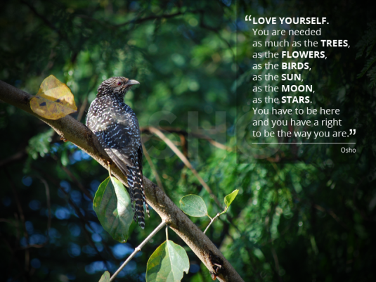 love urself