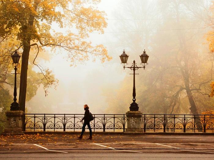 autumn-riga-latvia_58918_990x742