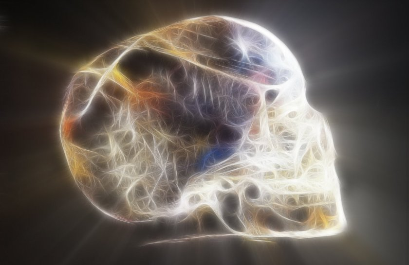 Lemurian Skull