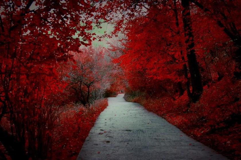 Autumn 33