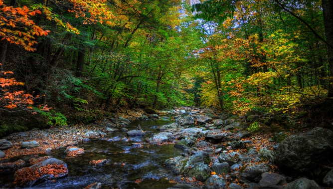 West Branch Little River, Stowe, VT