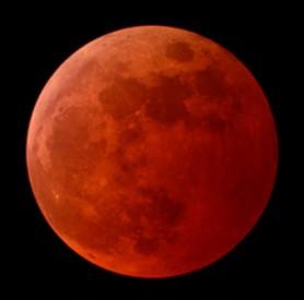 bloodmoon1-278x275