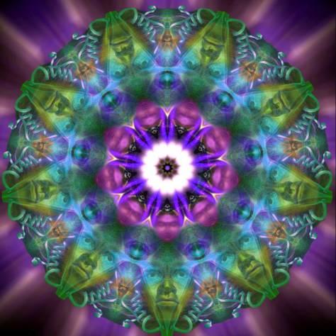 Elements Visual Alchemy