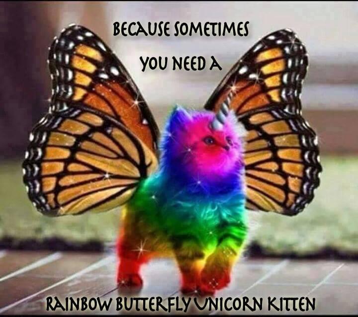RainbowUniKitty