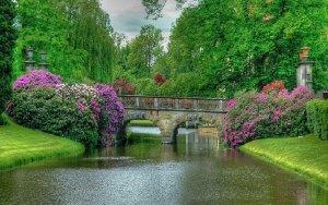 137705-world-most-beautiful-nature