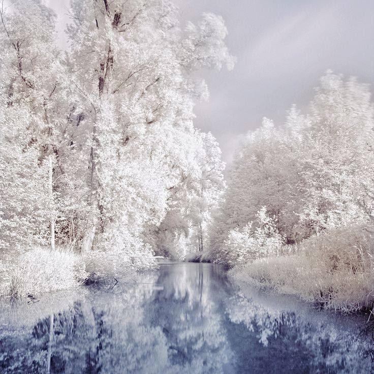 Nature - Snow