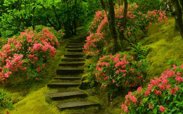 japanese-garden-2-620x387-1