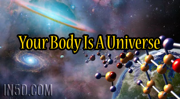 Body Is Universe