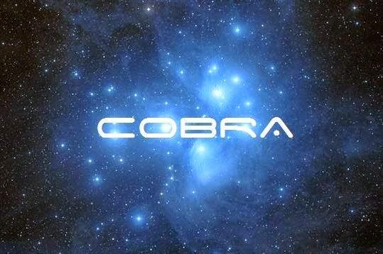 Image result for cobra 2012 portal