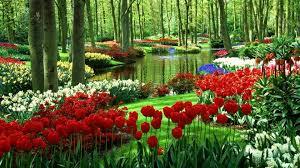 Sacred Gardens House of Healing - Alternative & Holistic Health ...