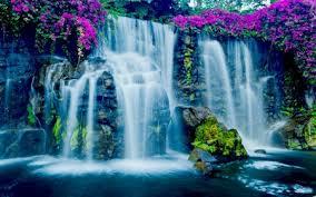 Exotic Waterfall,Hawaii - Waterfalls & Nature Background Wallpapers on  Desktop Nexus (Image 2199482)